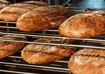 Brote aus Berlin – Hier kaufen wir unseres